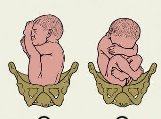 27 неделя беременности шевеления плода
