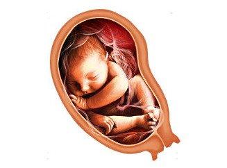 Шейка матки на 35 неделе беременности