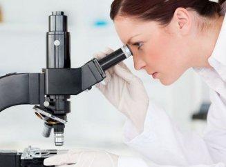 какие анализы крови нужно сдать на аллергию